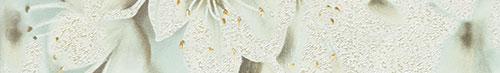 Aceria szara 2
